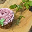 Cupcakes made with organic products — Stock Photo #53375877