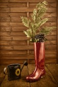 Christmas background, rain boots and watering can — Стоковое фото
