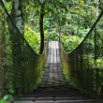Wooden walking bridge — Stock Photo #64635413