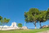 Trees in Bonaria square — Stock Photo