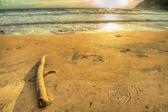 Fiji writing at sunset — Zdjęcie stockowe