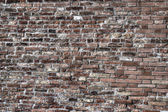 Old brick wall in hdr tone mapping — Stock Photo