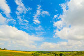 Clouds over a green meadow — Stock Photo