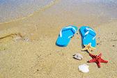 Flip-flops e estrela do mar à beira-mar — Fotografia Stock