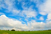 Green meadow under a scenic sky — Stock Photo