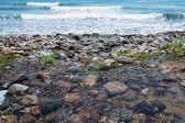 Dark pebble in Santa Caterina di Pittinuri shoreline — Stockfoto