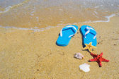 Blue sandals with starfish and shells by the shore — Stock Photo