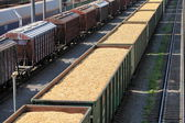 Rail cars loaded with wood chip — Stock Photo