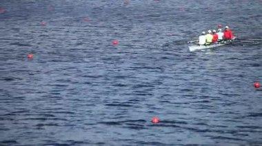 Scull rowing — Стоковое видео