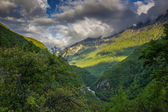 Caucasian mountains covered with forests. — Stock Photo