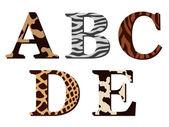 Zvířecí srst abeceda písmena s povrchovým Abcde — Stock vektor
