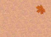 Texture from yellow leaves — Stock Photo