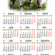 Calendar for 2015 year with goats — Stock Photo #56497475