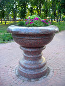 Beautiful flowers on the flower-bed from marble — Stock Photo