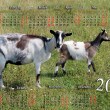 Calendar for 2015 year with goat and kid — Stock Photo #58223913