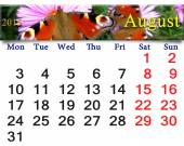 Calendar for August of 2015 year with butterfly of peacock eye — Stock Photo
