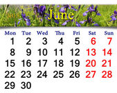 Calendar for May of 2015 year with image of blossoming iris — Stock Photo