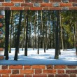 Wall from the red brick — Stock Photo #59920651