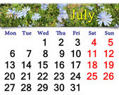Calendar for the July of 2015 year with flowers of Cichorium — Stock Photo
