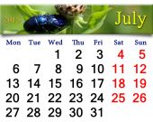 Calendar for July of 2015 with blue beetles — Stock Photo