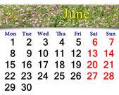 Calendario de junio del año 2015 con clavel silvestre — Foto de Stock