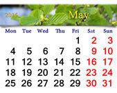 Calendario per maggio dell'anno 2015 con foglie di ontano — Foto Stock