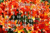 Calendar for July of 2015 on the background of red lilies — Stock Photo