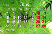 Calendar for the June of 2015 on the background of fern — Stock Photo