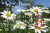 Calendar for the June of 2015 on the background of camomiles — Stock Photo