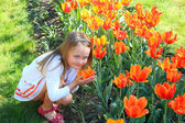 Little girl smells tulips on the flower-bed — Stock Photo
