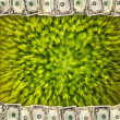 Frame from the dollars on the green abstraction — Stock Photo #69788081