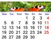 Calendar for September 2016 with butterfly of peacock eye — Stock Photo