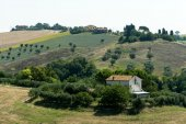 Summer landscape in Marches (Italy) — Photo