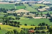 Summer landscape from Osimo (Marches) — Stock Photo