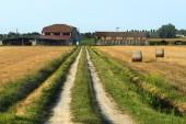 Country landscape near Ferrara (Italy) — Stock Photo