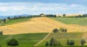 Montalcino (Toscana, Italia) — Foto Stock