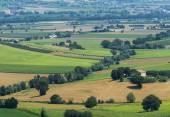 Krajobraz lato w Marche (Włochy) — Zdjęcie stockowe