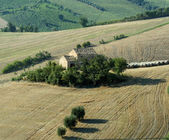 Marches (Italy): summer landscape — Foto Stock