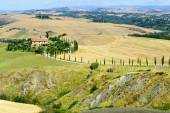 Crete Senesi (Tuscany, Italy) — Stock Photo