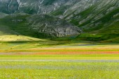 Piano Grande di Castelluccio (Italie) — Photo