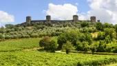 Monteriggioni (Tuscany) — Stock Photo