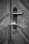 Door — Stock Photo