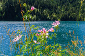 Lago de sant maurici — Foto de Stock