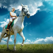 Young horsewoman riding on horse — Foto Stock #54463067