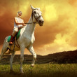 Young horsewoman riding on horse — Foto Stock #54464263