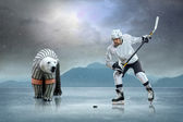 Ice hockey player and polar bear — ストック写真