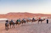 Camel caravan with tourists going to sahara desert in Morocco, Africa — Stock Photo