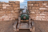 Old cannon at the ramparts of Essaouira, Morocco, Africa — Stock Photo