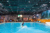 Boot Duesseldorf 2015 - the worlds biggest yachting and water sports exhibition. January 25, 2015 in Duesseldorf, Germany. Indoor kite surfing in the exhibition hall. — Stock Photo