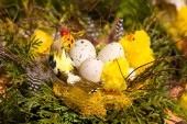 Nest with eggs - easter decoration — Stock Photo